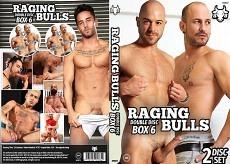 Raging Bulls Double Disc Box 06
