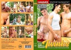 Hot Summer Twinks