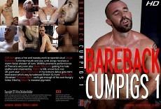 Bareback Cumpics 1