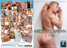 Mediterranean Stag