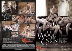 The Wood In The Cabin #2