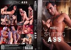 Splitting Ass